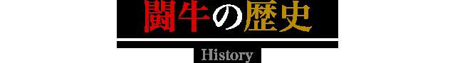 The history of bullfighting