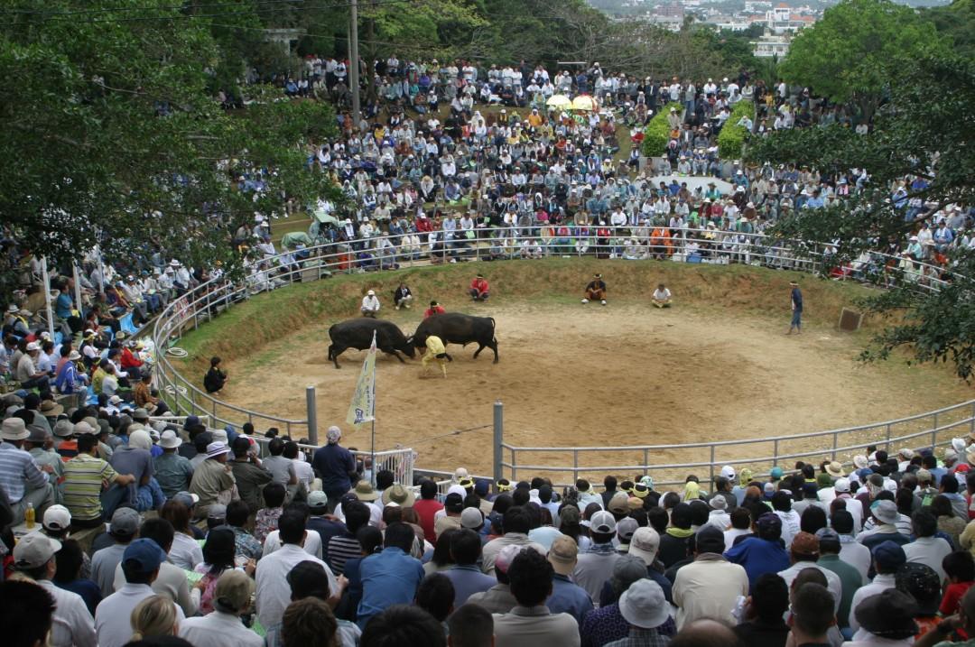 Agena bullring 3
